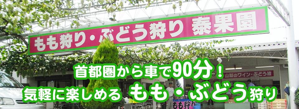 main_photo1
