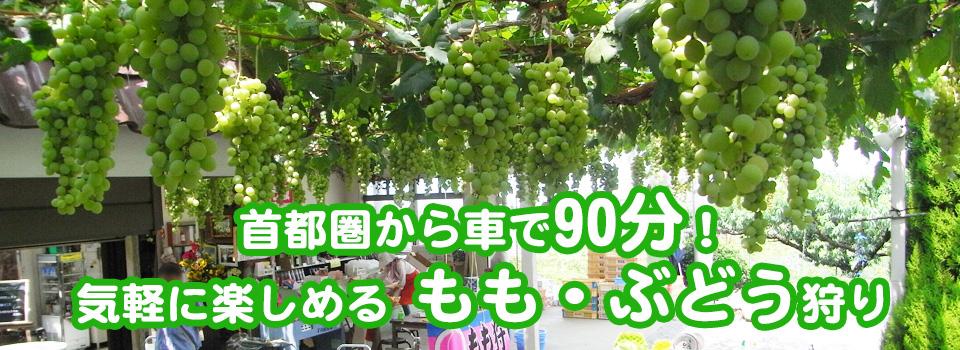 main_photo2