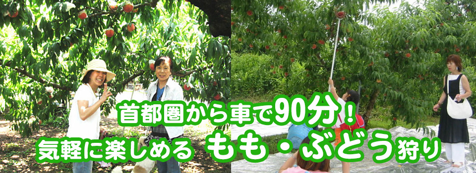 main_photo3